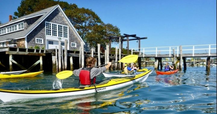 kayak tour from Peaks Island