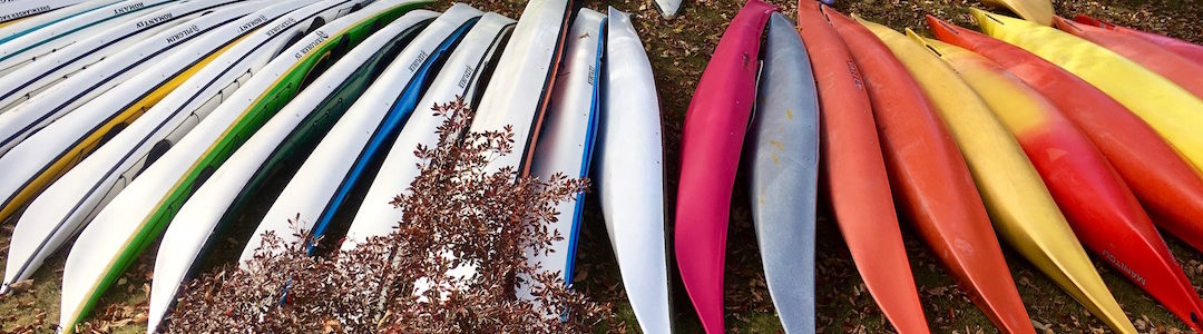 kayaks all lines up like ribs