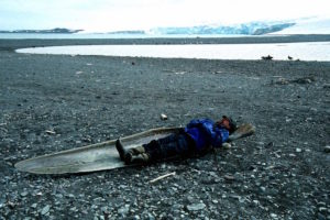 Long bones in Antarctica
