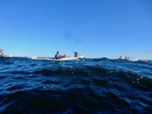 Bates College with Maine Island Kayak Co