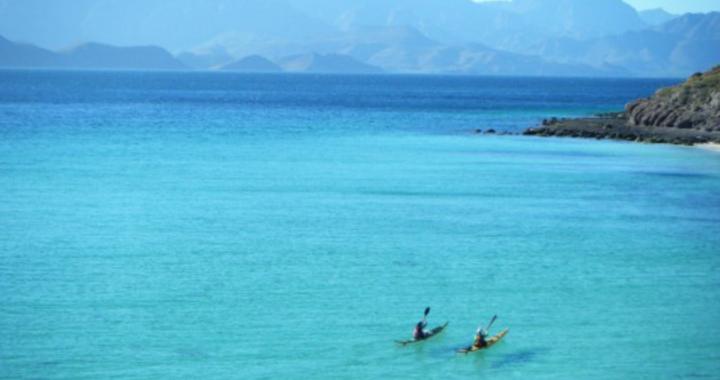 Sea Kayaking Baja