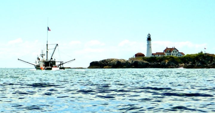 Trawler passes Portland Head Light