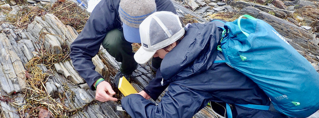 Data collection on Whaleboat Island